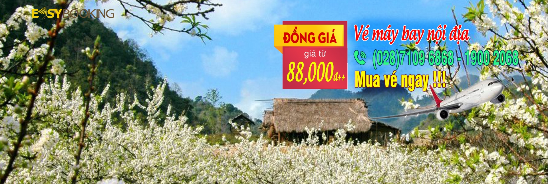 ve may bay noi dia dong gia 88k - vietnam airlines - easybooking - vn